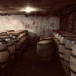 【ブルゴーニュ】ワインの街ボーヌ観光!