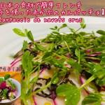 塩昆布でカブのカルパッチョ【日本の食材で簡単フレンチ】 Carpaccio de navets crus