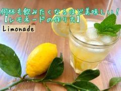 【パリ生活】おうち時間が楽しくなるレモネードの作り方。Limonade